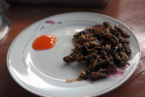 Dalat - krekels met dip